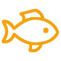 ryby z grilla żyrardów